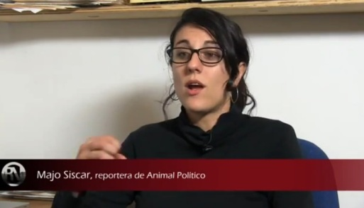 MAJO SISCAR ANIMAL POLITICO