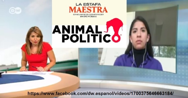 TANIA MONTALVO DEUTSCHE WELLE ANIMAL POLITICO